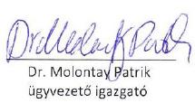 Dr Molontay Patrik, Ügyvezető igazgató